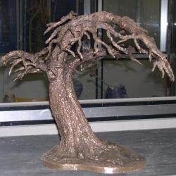 l'arbre cocon est en attente de patine